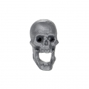 Warhammer Bitz: Vampire Counts - Skeleton Warriors - Skull / Head C