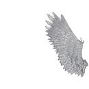 Warhammer 40k Bitz: Dark Eldar Harpyien Flügel A1 - Rechts