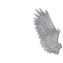Warhammer 40k Bitz: Dark Eldar Harpyien Flügel A2 - Links