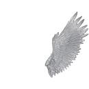 Warhammer 40k Bitz: Dark Eldar Harpyien Flügel C1 - Links