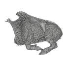 Warhammer AoS Bitz: ORRUKS - 002 - Boar Boys - Torso F2 - Wildschwein, Links
