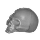 Citadel Bitz: Skulls for Warhammer AoS & 40k - Skull A11 - Human