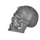Citadel Bitz: Skulls for Warhammer AoS & 40k - Skull A12 - Human