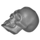 Citadel Bitz: Skulls for Warhammer AoS & 40k - Skull A20 - Human