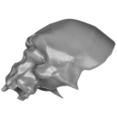 Citadel Bitz: Skulls for Warhammer AoS & 40k - Skull B02 - Giant