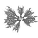 Citadel Bitz: Barbed Bracken - Plant A06 - Large