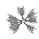 Citadel Bitz: Barbed Bracken - Plant A07 - Large