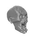 Warhammer AoS Bitz: VAMPIRFÜRSTEN - 008 - Zombies - Kopf G