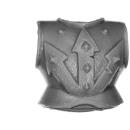 Warhammer AoS Bitz: CHAOS - Knights - Torso D1 - Front
