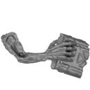 Warhammer AoS Bitz: VAMPIRFÜRSTEN - Vargheists - Arm G1