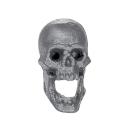 Warhammer AoS Bitz: VAMPIRE COUNTS - Skeleton Warriors - Skull / Head C