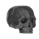 Warhammer AoS Bitz: ORRUKS - Orruks - Accessory B - Skull