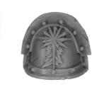 Forge World Bitz: Warhammer 40k - Astral Claws - Marine Shoulder Pads - Shoulder Pad E