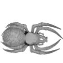 Warhammer AoS Bitz: ORRUKS - Spider Riders - Spider D