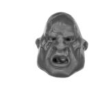 Warhammer 40k Bitz: Astra Militarum - Bullgryns, Ogryns, Nork Deddog - Head B - Ogryn