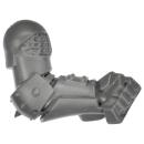 Warhammer AoS Bitz: CHAOS - 012 - Skullcrushers - Arm C - Left
