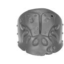 Warhammer AoS Bitz: CHAOS - Putrid Blightkings - Schulterpanzer C - (King B)